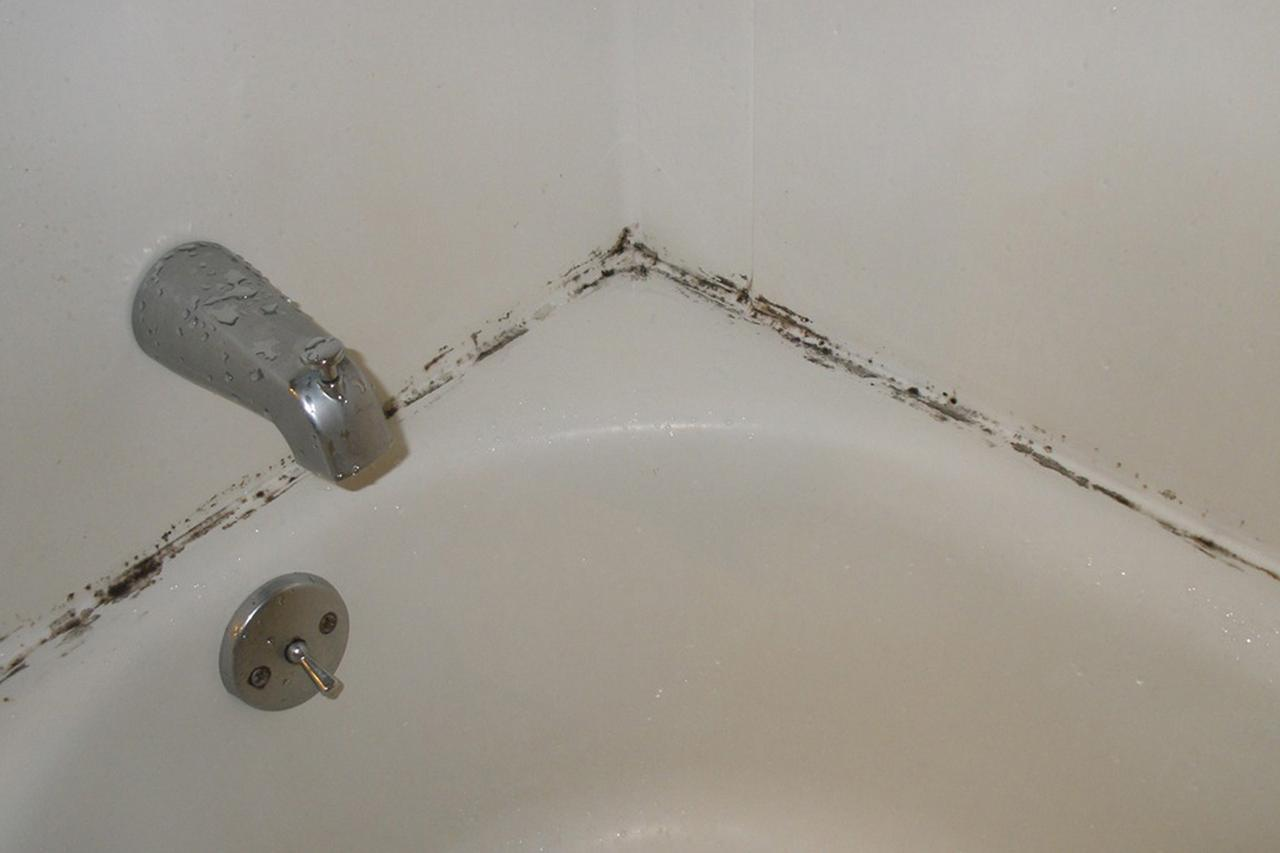 Bathroom mold how to kill bathroom mold mold on - How to clean black mold in bathroom ...