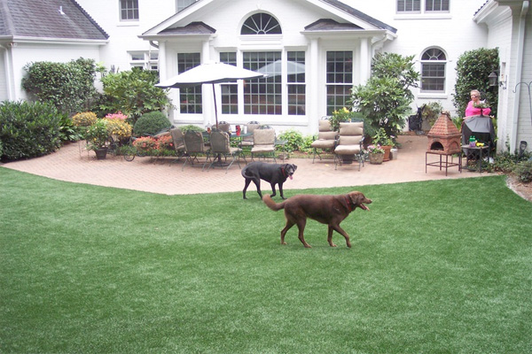 Fake Grass for Dog Yard | Building a Dog Run