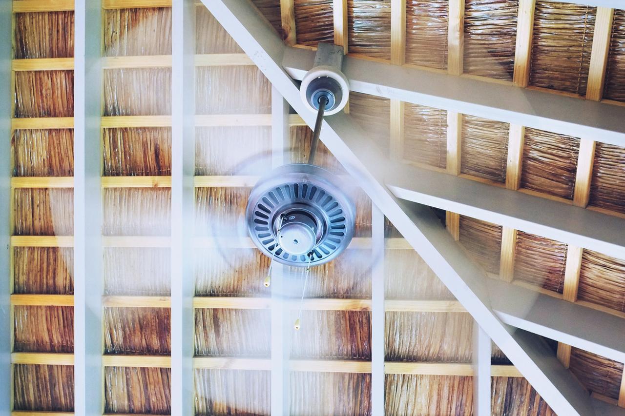 Ceiling Fan Direction In Summer Which Way Should A Fan