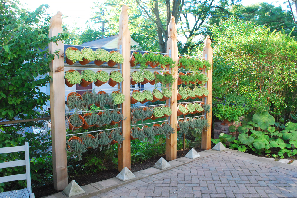 Vertical Garden Fence Ideas Same Day Flower Delivery