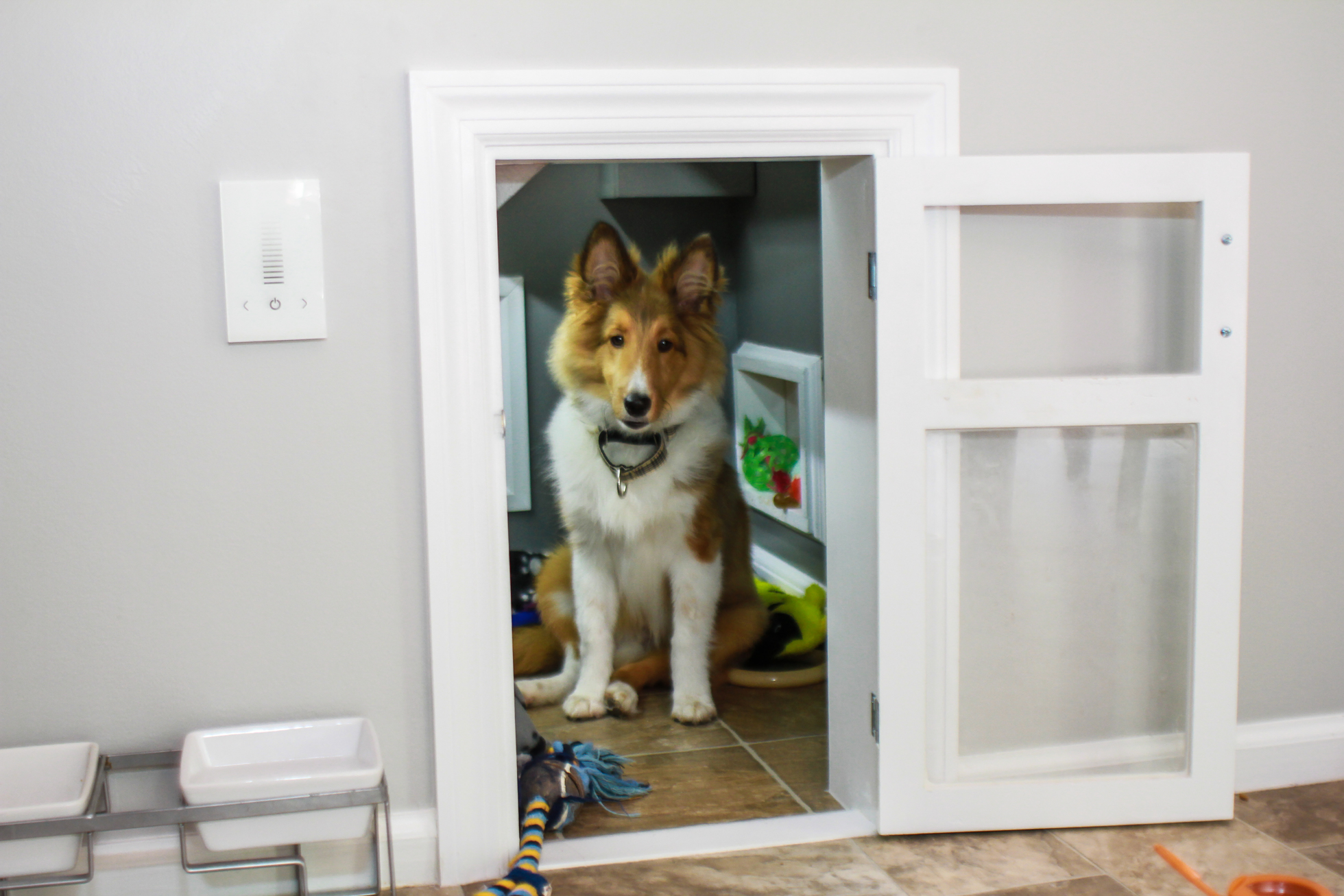 Sheltie dog sitting in a built-in dog house in a home