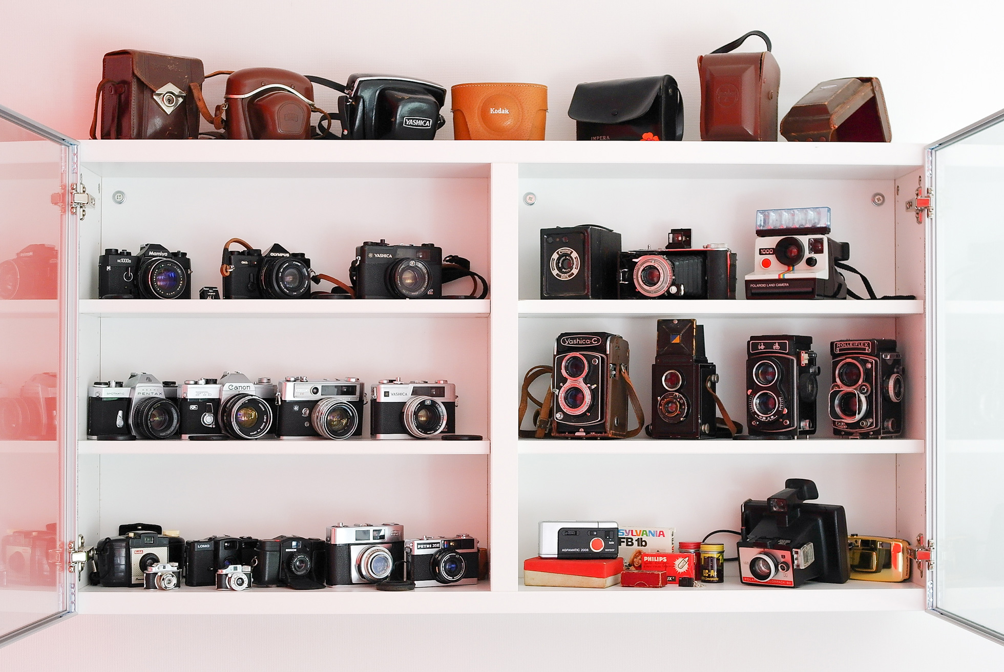 Camera collection displayed on shelves