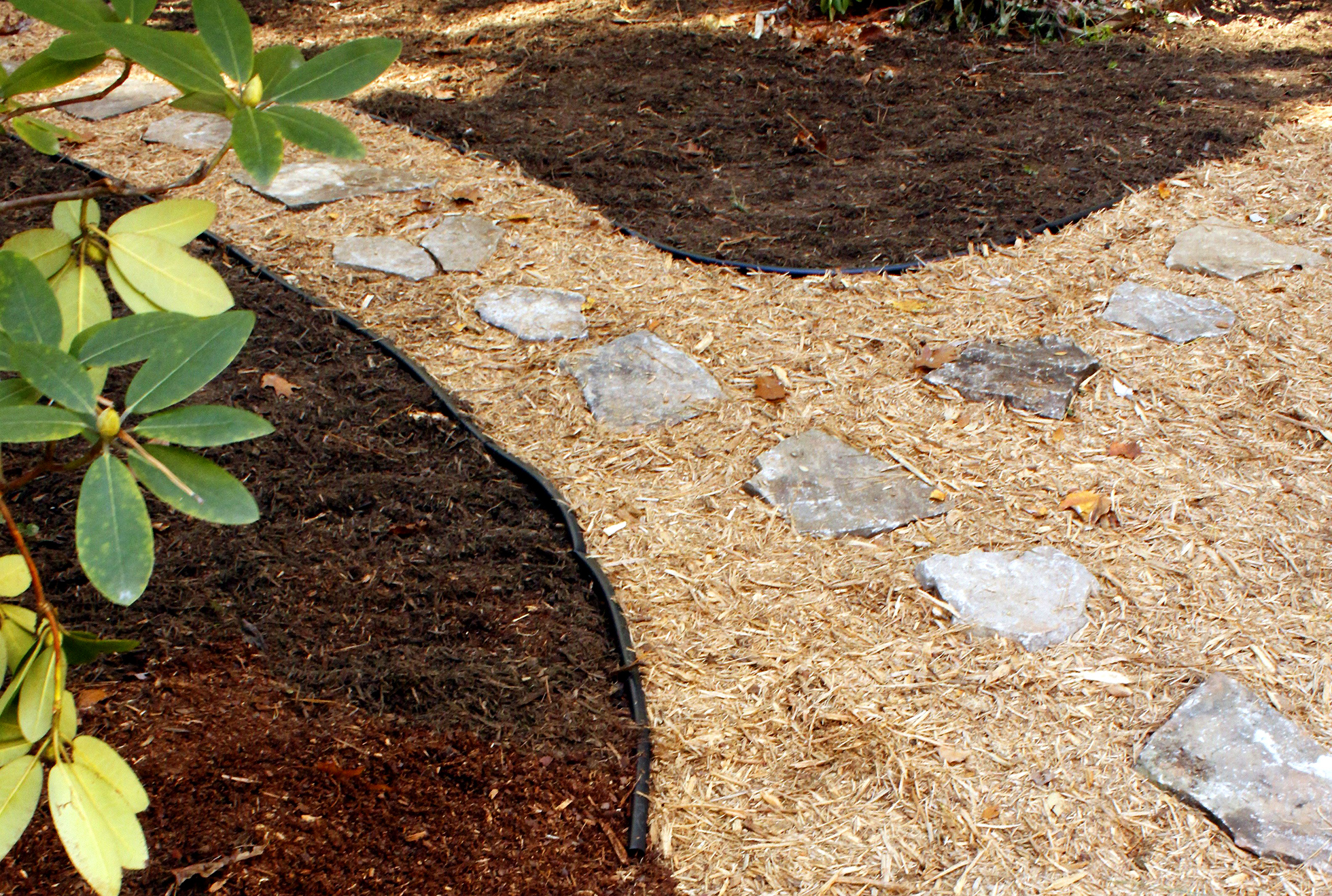 A bed of light and dark mulch with a stone path through it