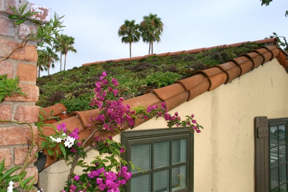 Green Roof Guides | Eco Friendly Roofing Options | HouseLogic Memphite.com