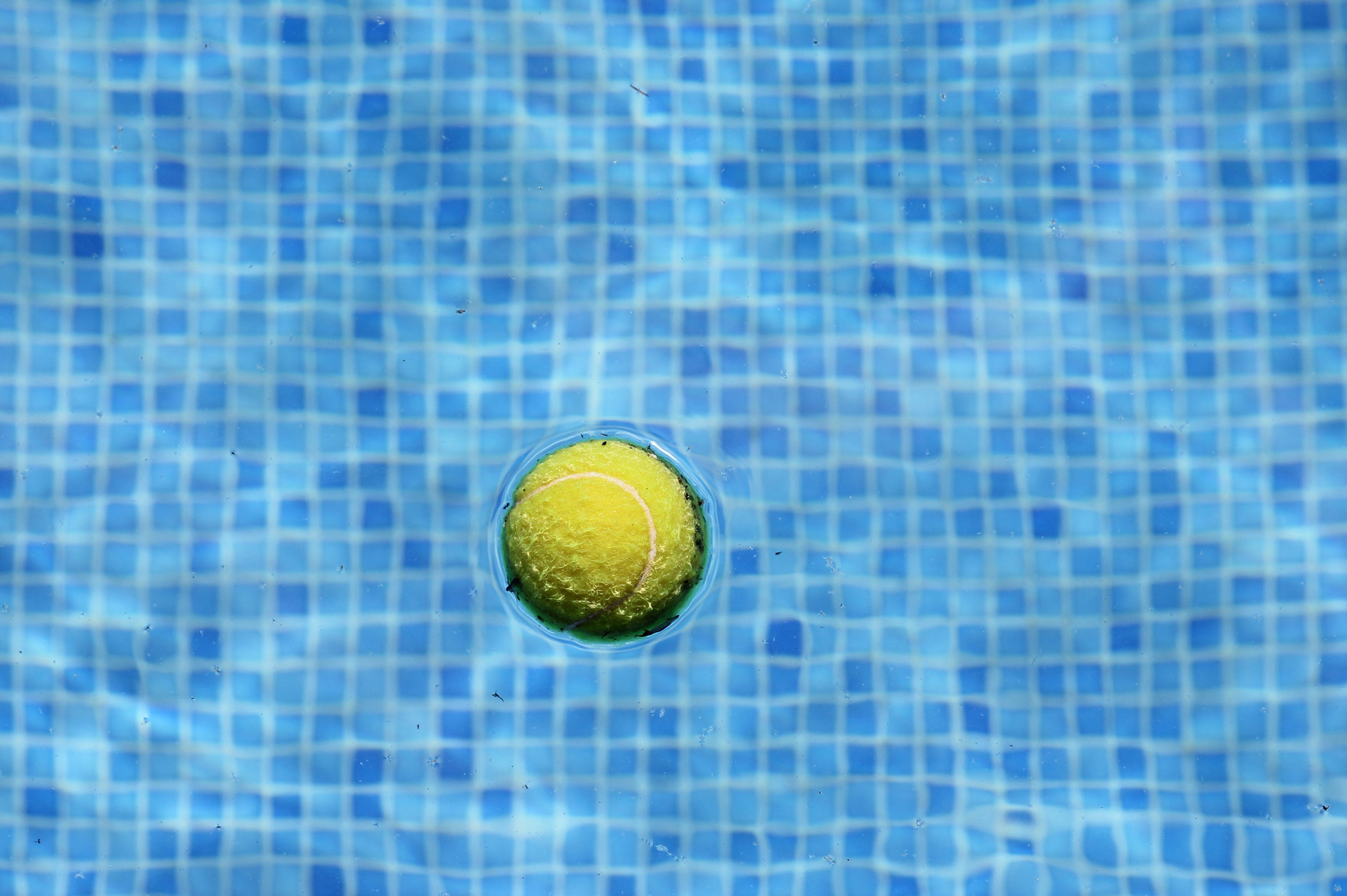 Tennis ball in a pool to help keep water clean