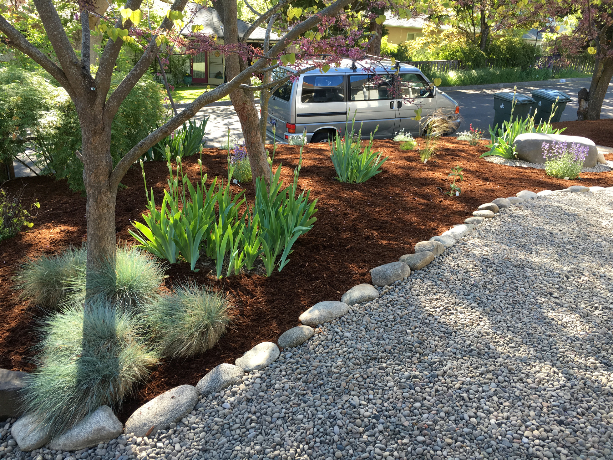 Nicely landscaped mulched front lawn