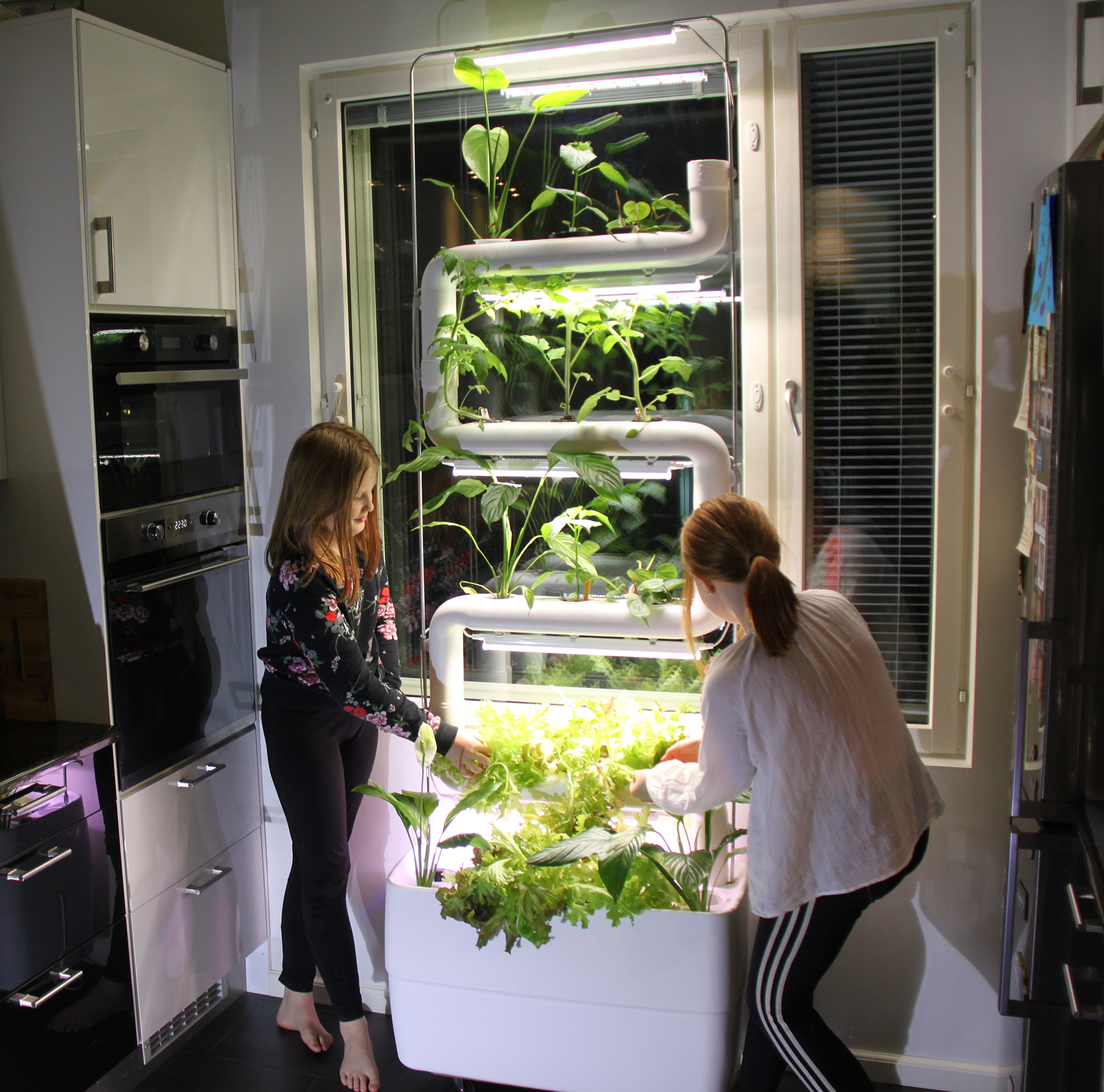 Two children tending an indoor smart garden