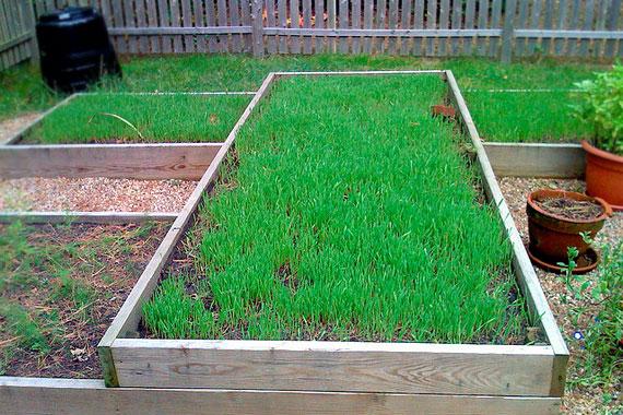 How To Fix Your Soil Healthy Garden Soil Tips Houselogic