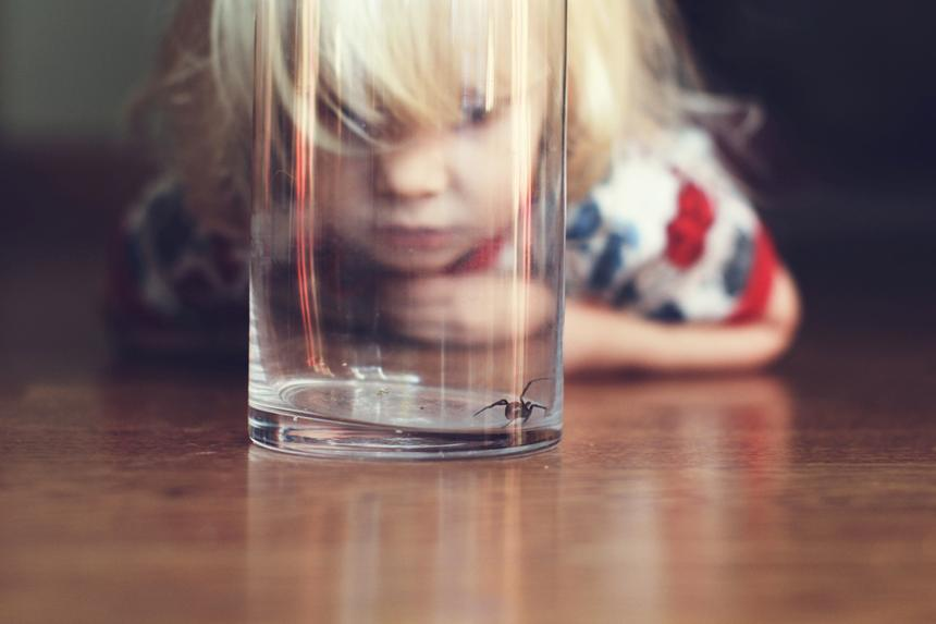 Girl looking at spider trapped under a glass at home