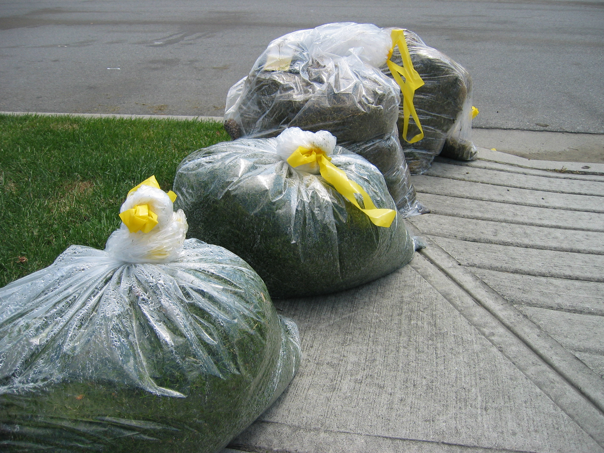 Four garbage bags full of lawn clippings on drive way