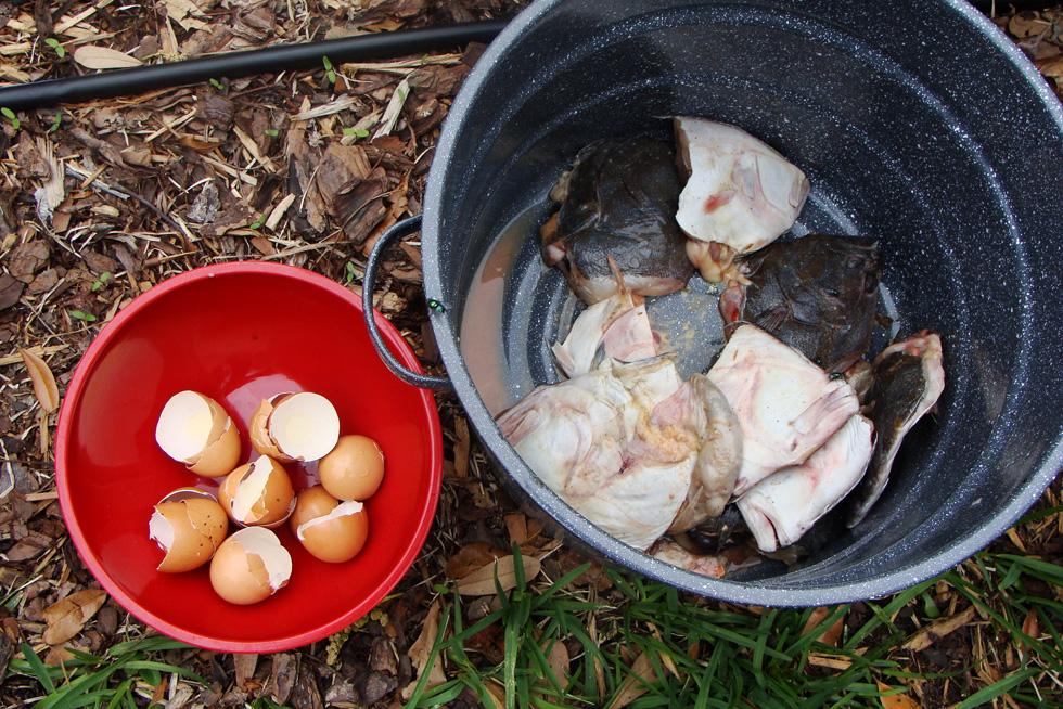How to Make Fertilizer Homemade Plant Fertilizer HouseLogic