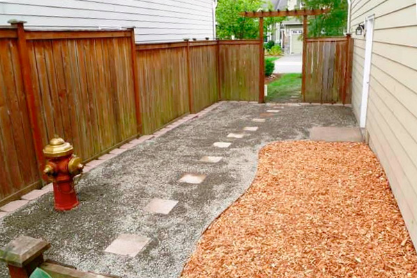 landscaping for dogs  houselogic dogfriendly landscaping, dog friendly backyard landscaping ideas, pet friendly backyard landscaping ideas