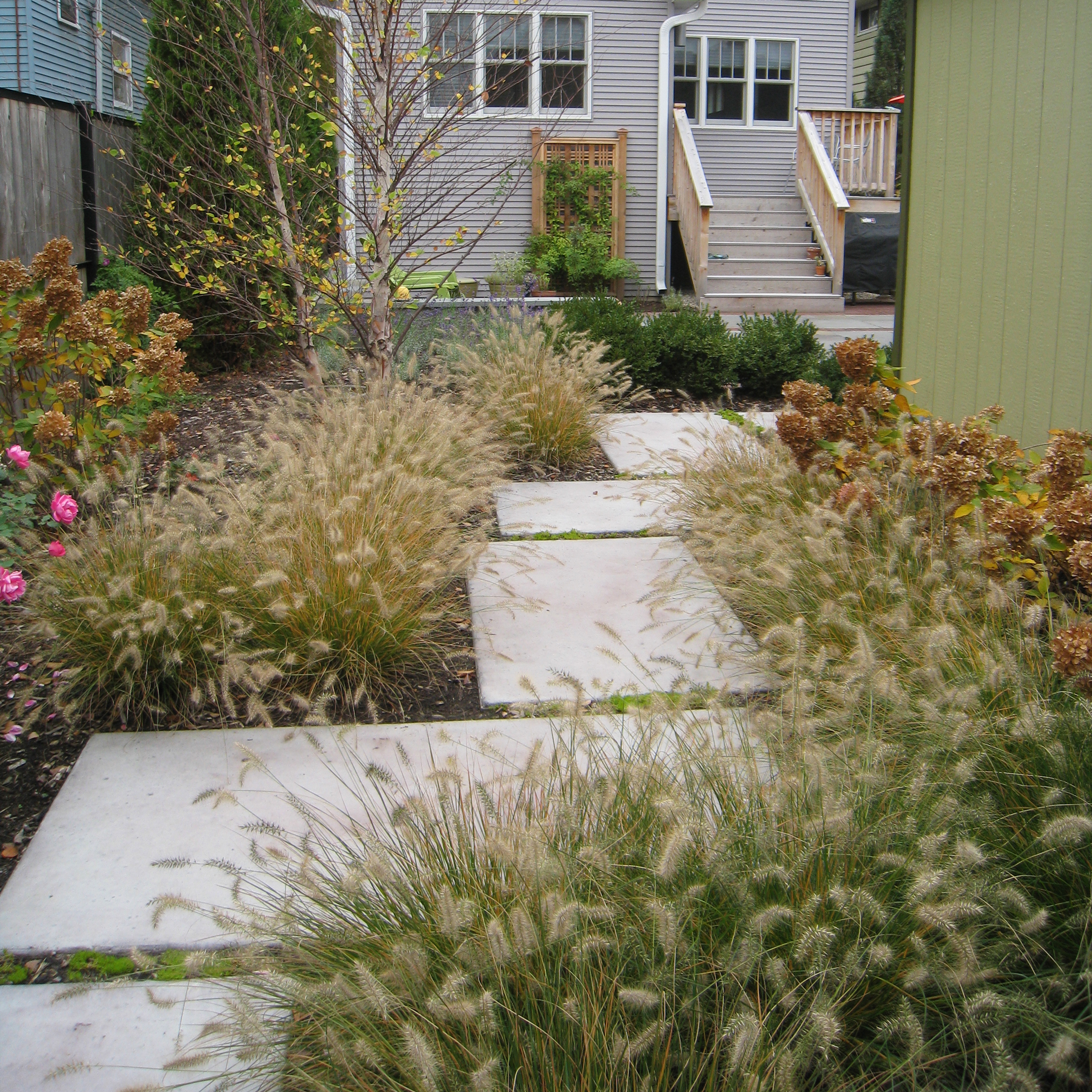 Low Maintenance Landscaping Ideas  Low Maintenance Shrubs