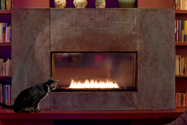 Cat next to direct vent fireplace in living room