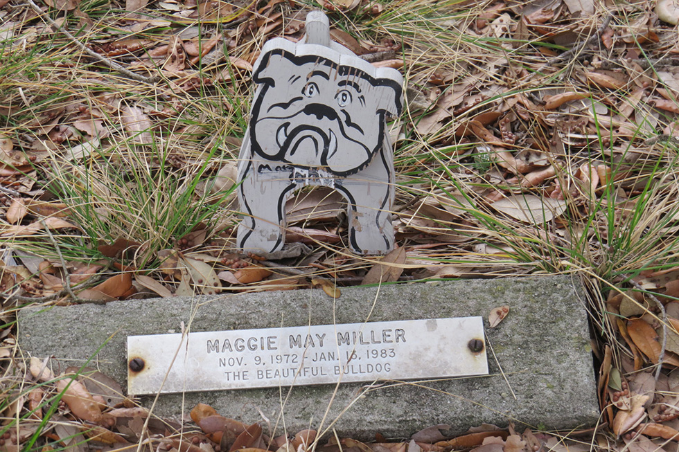 Headstone for dog buried in family's yard