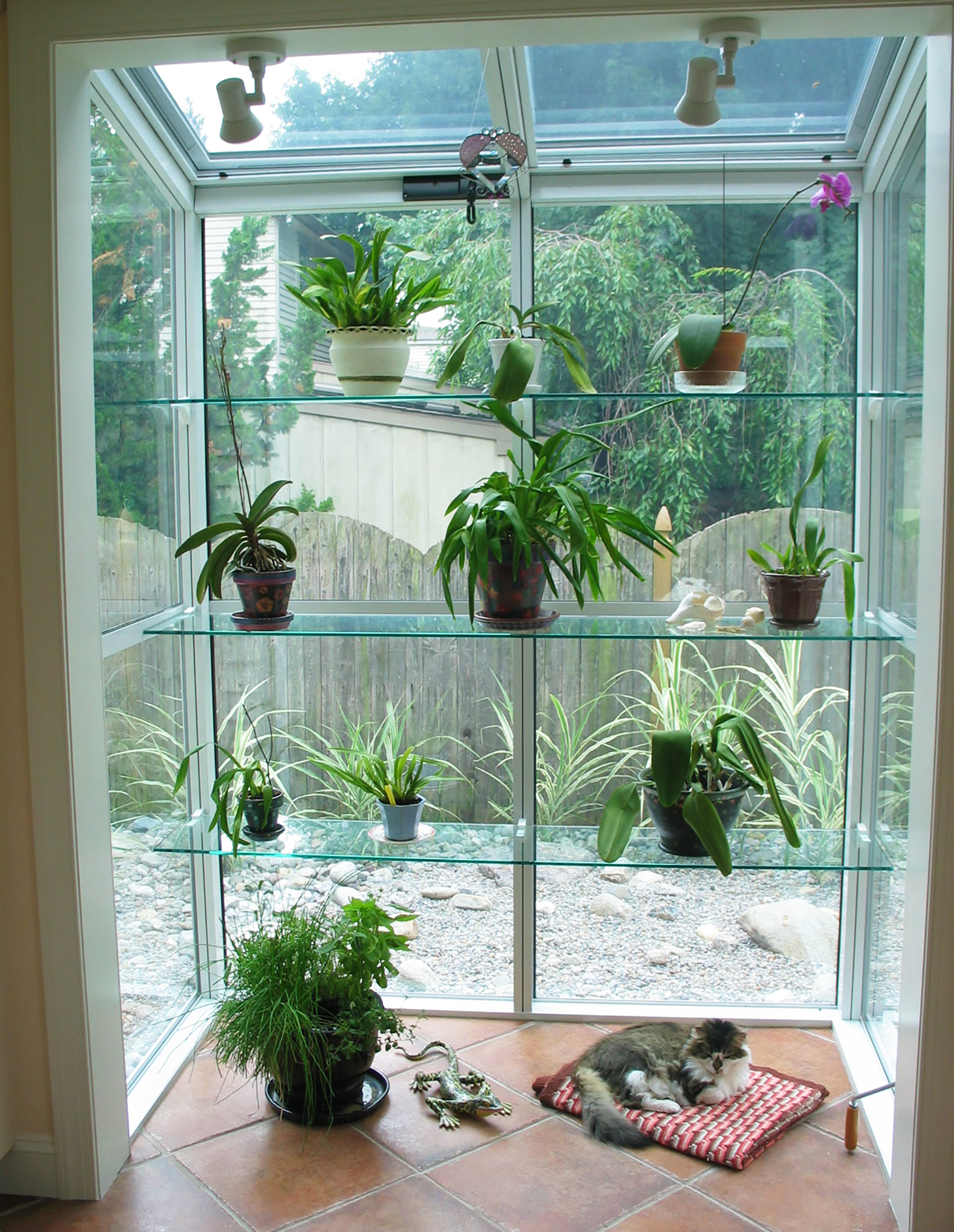 Glass window shelving with plants