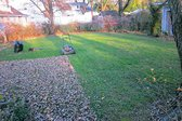 Winter lawn care includes mulching leaves