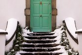 Green door at top of snowy, icy steps lined with plants