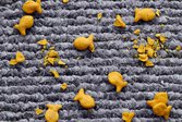 Goldfish crackers spread and broken on gray carpet