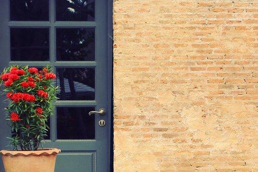 Brick exterior of a house with a red geranium