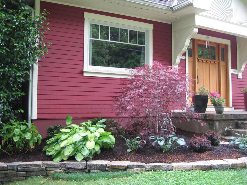 A red house with a mulched bed and Japanese maple