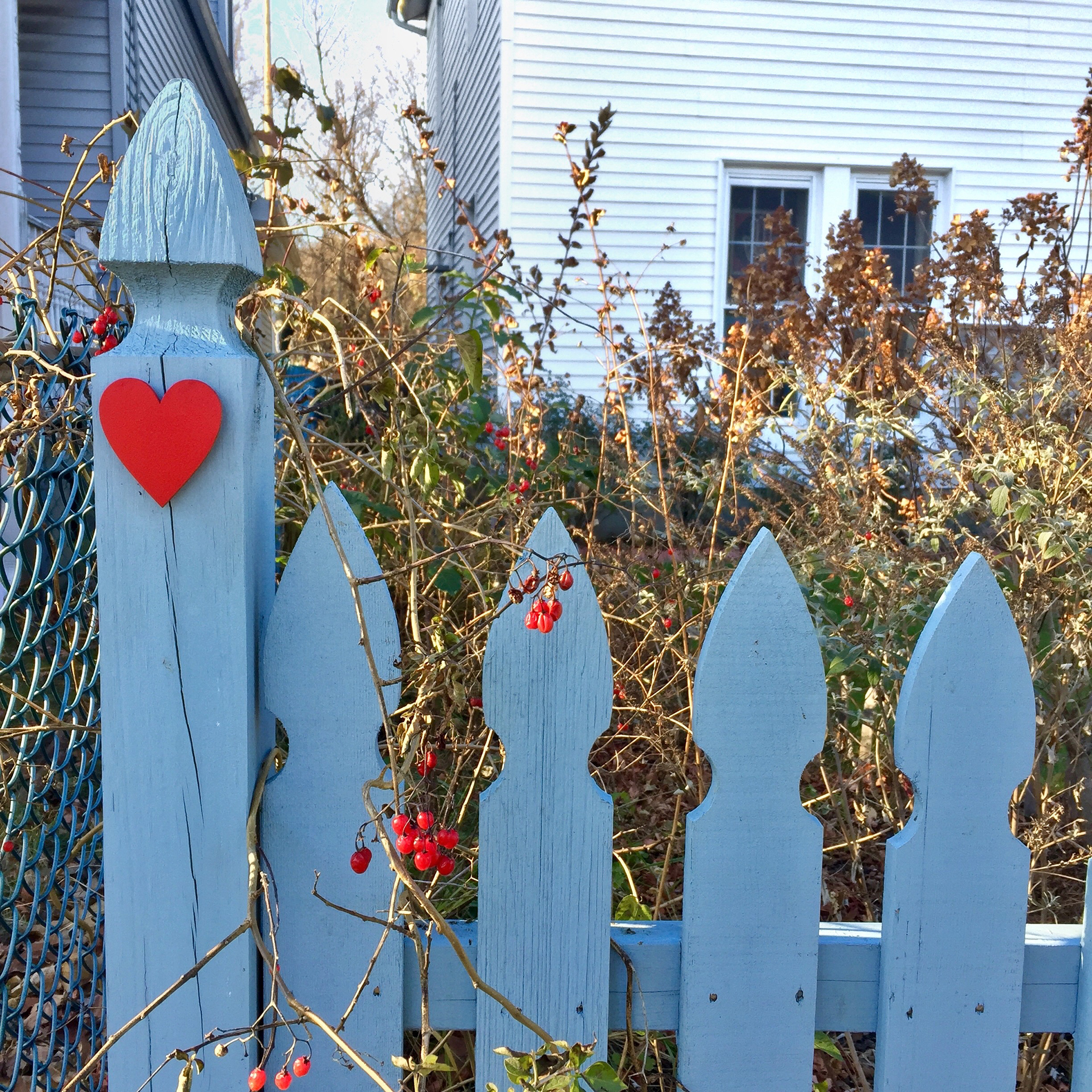 Gray, wooden fence with red heart in front of lawn debris