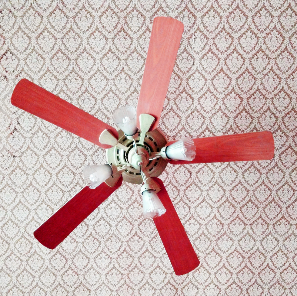 Winter ceiling fan direction when to buy kitchen appliance aloadofball Gallery